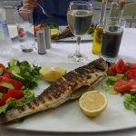 The Sea bass and salad