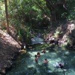 Photo of Katherine Hot Springs