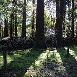 Foto de Hakusan Shrine (Heisenji-Hakusan Shrine)