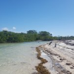 beach side of the island