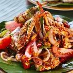 Curry Leaf Foto