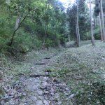 本丸への登城道