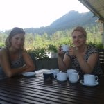 have a Cup of Sri lankan Black Tea !! visit tea plantation & tea factory.