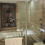 Rain Shower and Bath Tub