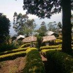 View of Nature Zone Resort.