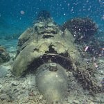 snorkelling over the WWII plane wreck