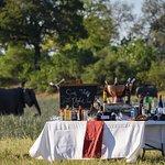 Sundowner Set-up at Savuti Camp