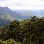 View towards Coffs from the sky-walk