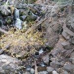 Treasure Falls ภาพถ่าย