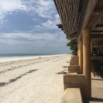 Photo of Blue Marlin Beach Restaurant