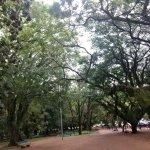Photo of Moinhos de Vento Park