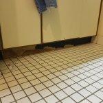 Yucky Bathroom