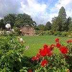 Bilde fra Upton Country Park