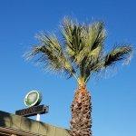 Sunny Central Cal