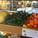 Perkins Orchard offers so much more! Not only does it offers fruit but, it offers fresh vegetabl