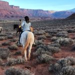 On-site horseback rides - all experience levels!