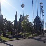 Photo of Hollywood Forever Cemetery