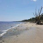 Little Talbot Island State Park-billede