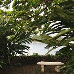 Photo de Goblin Hill Villas at San San