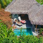 Junior Suite Garden Pool Bungalows