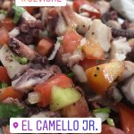Photo of El Camello