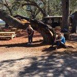 Camp Mack's River Resort Foto