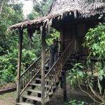Foto de Otorongo Amazon River Lodge
