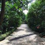 Billede af Sonya's Garden B&B