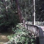 صورة فوتوغرافية لـ Mulu World Heritage Area