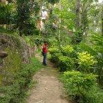 Walking around spice garden
