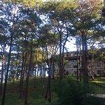 The Manor at Camp John Hay