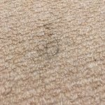 Clump of human hair on carpet - housekeeping?