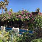 Photo of Aruba Sunset Beach Studios