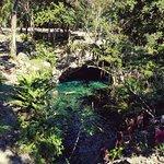 Photo of Grand Cenote
