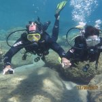 Diving Summer 2017