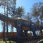uno de los tantos dinosaurios que dejaron su huella por el lugar.