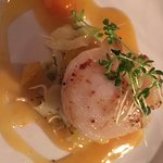 Scallop on shaved fennel with orange etc sauce