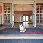 We are a Pet Friendly hotel, with a reasonable cost of $35.00 per stay
