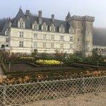 Photo de Château de Villandry