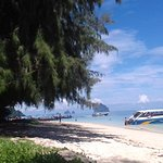 Photo of 4 Islands Day Tour by Opal Travel Speed Boat