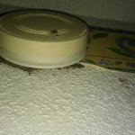 Years of dirt build up under the smoke alarm (does this operate??)