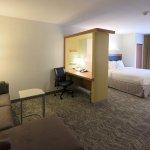 Foto de SpringHill Suites Albany-Colonie