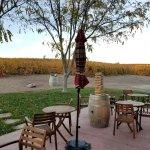 Foto de Red Soles Winery