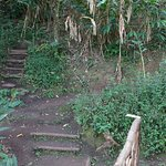 Route to Vanya
