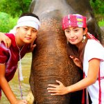 Elephant and Karen people, we are living together many centuries.