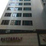 Photo de Butterfly on Wellington