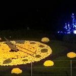 Zdjęcie Flower Clock