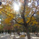 Late autumn color Ditan Park