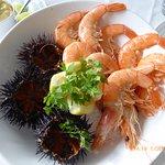 oursins et crevettes