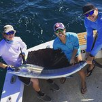 The sailfish that we caught